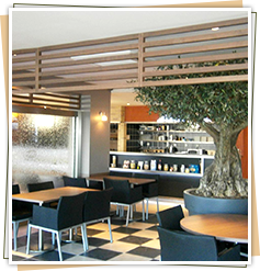 Aménagement de cafés et restaurants